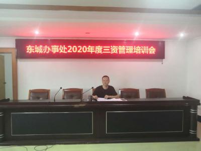 """曾都区东城办事处开展社区""""三资""""管理培训"""