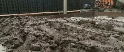 随州市污泥无害化处理项目通过环境评审