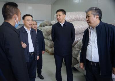 克克调研香菇产业发展时强调:坚持集群发展 强化科技支撑 助推香菇产业做大做强做优
