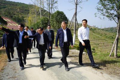 水利部副部长陆桂华来随调研提出:加强水土保持 保护绿水青山