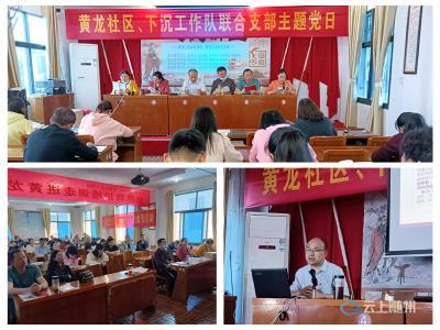 中国电信随州分公司下沉社区联合开展党史学习教育