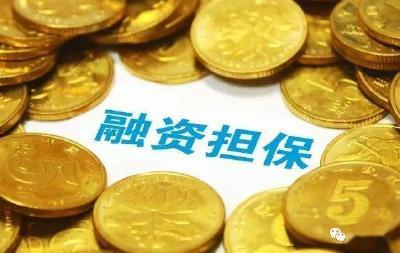 """随州市出台""""四补机制""""支持政府性融资担保机构持续健康发展"""