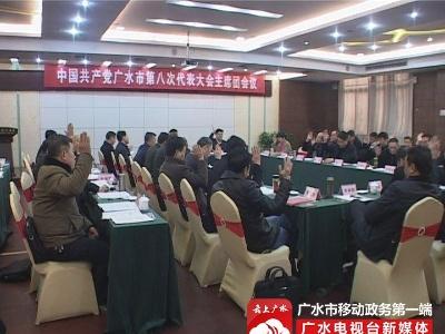 市第八次党代会主席团举行第二、三、四次会议