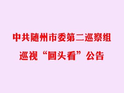 """中共随州市委第二巡察组  巡视""""回头看""""公告"""