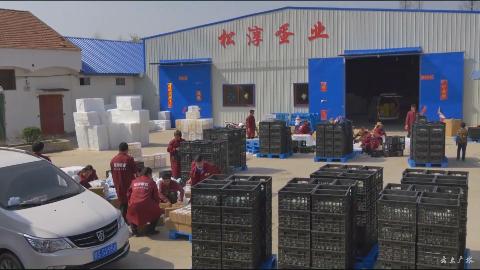 """《精准扶贫展双翼 """"互联网+""""促腾飞》系列报道"""