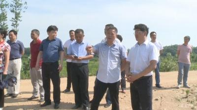 田涛:加速推进污水处理厂 农村生活垃圾治理 确保圆满完成工作任务