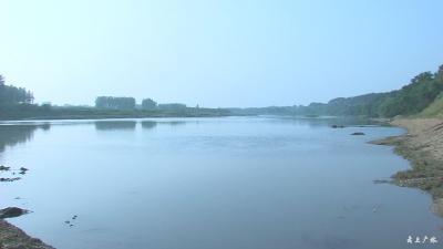 广水大力整治河道畜禽污染