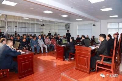 广水法院公开宣判连氏家族恶势力犯罪集团案