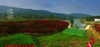 寿山生态园——你想要的桃花美景都在这里了!