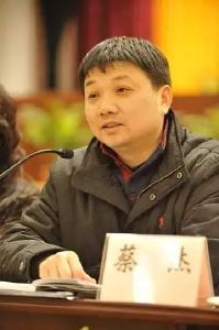 武汉市委常委、市委秘书长蔡杰被查
