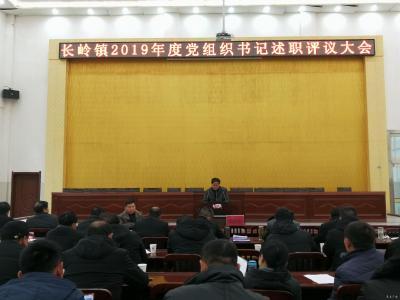 長嶺鎮召開2019年黨組織書記述職評議大會
