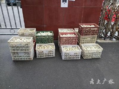 广办、杨寨向广水实高援助生活物资