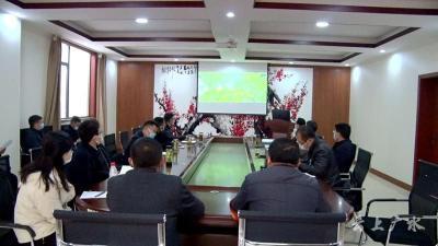 黄继军 田涛等领导就三潭风景区提档升级现场办公