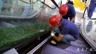 广水市市场监督管理局开展电梯应急救援演练