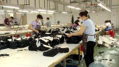 复工复产 广水市安宏兄弟运动服饰:做精工艺  做强品质  拓展海外市场