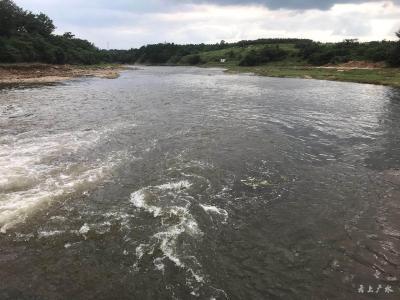 战高温斗酷暑   市生态环境分局持续开展巡河排查工作