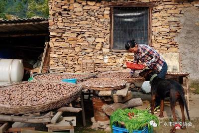 廣水:發展優勢產業   建設現代農谷