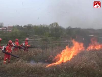 V視|市林業局:舉行森林防火應急演練 筑牢森林安全防線