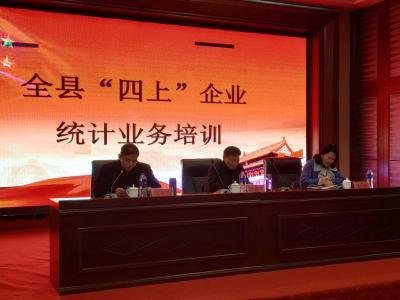 随县统计局举行2019年统计年报业务培训会