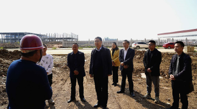 陈武:全力推动项目建设和企业发展提速提质提效