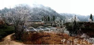 【静读】小春说:听,邓村下雪了……