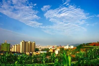 夷陵区领导赴广东考察:欢迎有实力的粤企来夷投资兴业