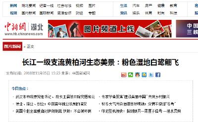 中新网:三峡库坝区夷陵迎今冬首场降雪