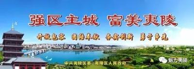 【两会进行时】V视 | 夷陵区第五届人民代表大会第五次会议关于政府工作报告的决议
