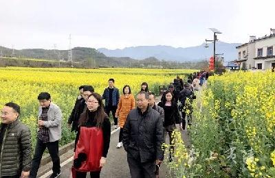 宜昌夷陵:文明实践让乡村更美丽!