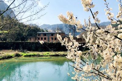 三峡日报:春日探访下牢溪
