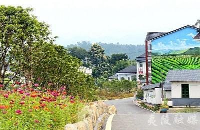 军田坝:让鲜花开满村里每个角落