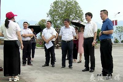 驻宜全国人大代表调研夷陵区长江大保护情况