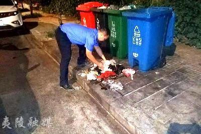 双手捧拾垃圾 打造干净整洁的环境
