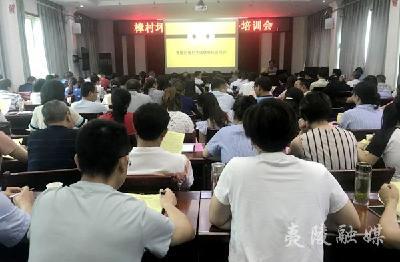 樟村坪镇召开2019年健康扶贫政策培训会