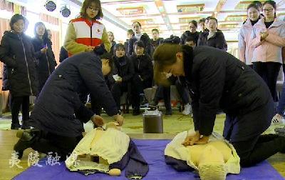 【安全大于天】夷陵区红十字会:救护培训进企业 延伸旅游安全网