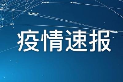 最新!湖北:3月15日武汉新增确诊病例4例   16个市州均为0例