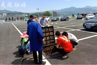 夷陵区审计局开展旅游集镇停车场建设项目审计