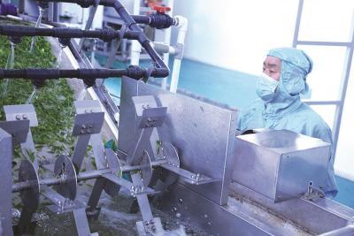 三峡晚报:一片茶叶的旅程
