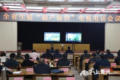 """襄州区集中收听收看全省生猪""""稳产保供""""电视电话会议"""