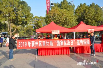 """襄州区审计局积极开展""""12.4""""宪法日宣传活动"""