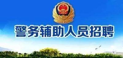 高中可报,襄州区公安局招28人