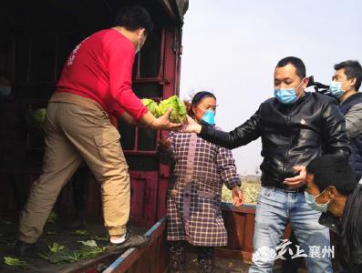 【众志成城抗疫情】襄州:搭建农产品产销平台 保障物资供应