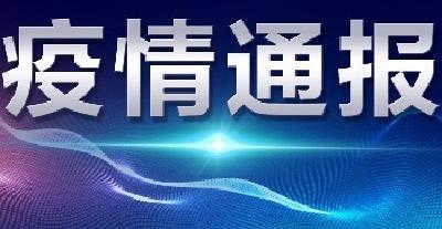 襄阳市境外返襄入襄人员有关情况通报(12)