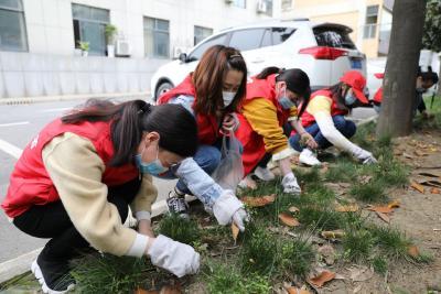 """襄州区卫健局:开展""""爱国卫生 清扫清洁""""志愿服务活动"""