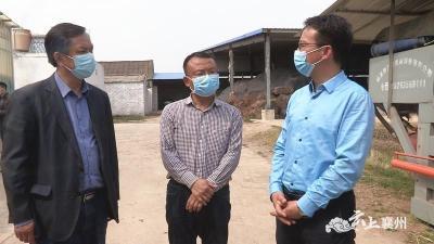民进襄阳市委员会领导调研襄州区开展脱贫攻坚民主监督活动