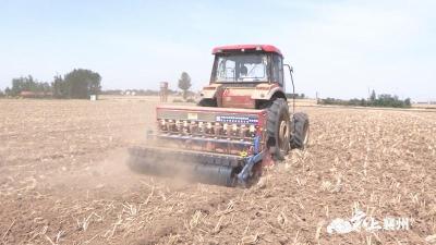 襄州:机械化技术种植 让小芝麻释放大能量