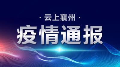 襄阳市新型冠状病毒肺炎疫情通报(113)