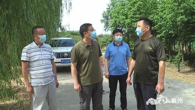 襄州区领导调研峪山镇项目建设情况