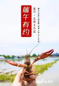 端午特辑︱摸鱼钓虾捉泥鳅,畅玩水上乐园...解锁夏日新玩法!