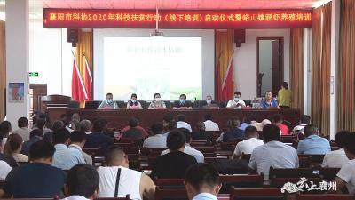 市科协在襄州峪山举办稻虾共作养殖培训